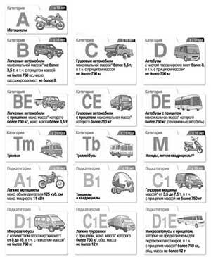 Расшифровка категорий водительского удостоверения